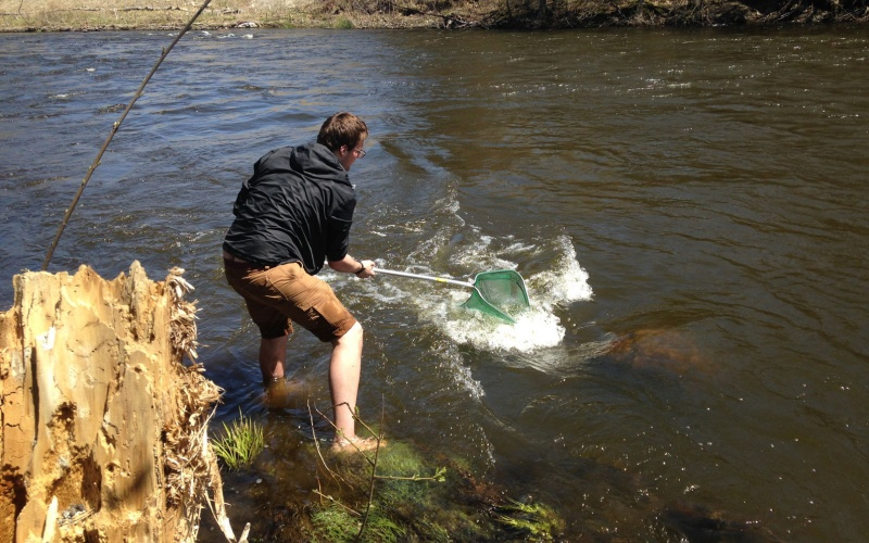 Environmental Science student in river with net