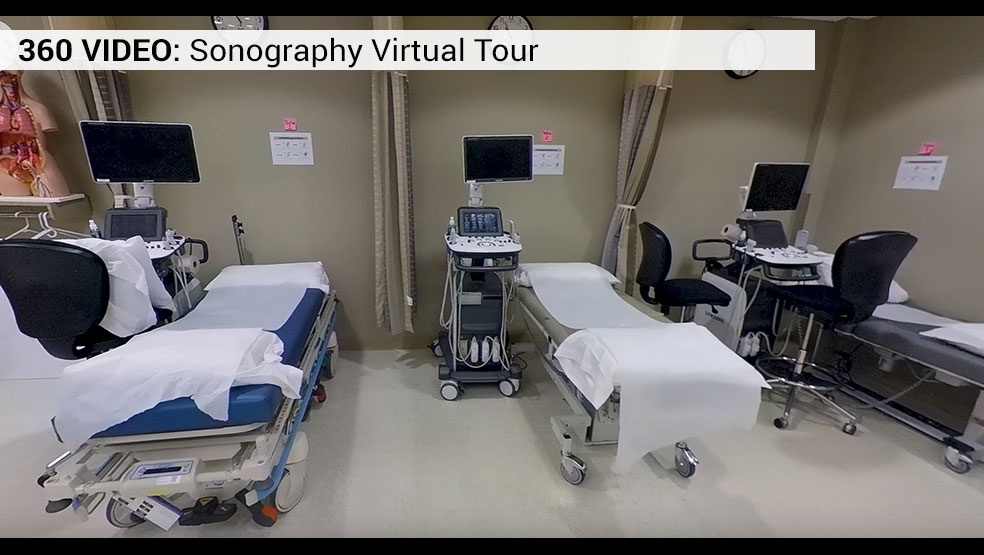 sonography video